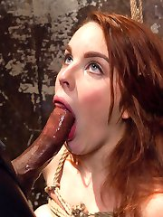 Spanish Beauty Amarna Miller begs for pain and discipline to satisfy her smart ass cunt....