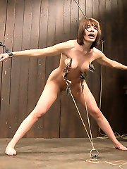 Live Show Mondays brings you the conclusion of the May live show that featured Dana DeArmond, Busty Nika Noire and special guest co-top Ariel X. Dana is subjugated with the zipper from hell.  We make her squat as the zipper is applied and anchored to the floor. All Dana has to do is stand up really fast and the pain will be over.  This is something she finds impossible to do.  The burning in her legs gets worse, the clothespins dig in deeper, but every time Dana musters the courage to pull up, the pain increases and she settles down. And that makes it all worse.  The tears, the begging, Dana struggles with the hardest thing she has ever done in BDSM.  In the end she can't do anymore, her legs are giving out and the pain of the clips are too much for her.  So we rip the little fuckers off and Dana is sent reeling!  Once she collects herself we bind her down so Ariel X can take a HUGE dildo and fuck the living hell out of her ass. A long, deep and brutal ass fucking continues until Dana cums again and begs us to stop.  :)