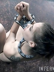 Bobbi Dylan doesn't really want to escape. She flails about, but it's just a show. What she really wants is for his hands all over her. She wants to feel his whip caress her body. She wants him to lock the collar around her neck so tight it makes her voice change.