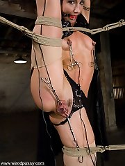 Wow! This shoot has it all! Wenona is an amazing restrain bondage model who loves agony and can arch and flex into the craziest positions! Princess Donna uses Wenona's figure to the max, forcing her into kinky bondage positions, shocking her all over, humping her hard and deep in all her holes, and making her cum until she is BEGGING for the orgasms to stop! If you haven't joined yet, join now!