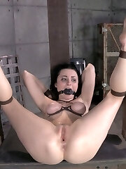 In our live show with Veruca James, we've already used her jaws and pussy. Time to take the ass. The pace is ramping up and our pallid refined star is dizzy and perplexed. The pacing of Bars shows are relentless and without mercy. Every stance gets tighter and more punishing and we are onto part three of our show.