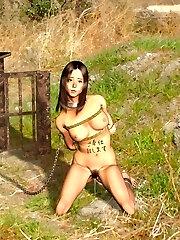 free hentai bondage pornography