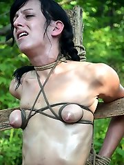 Elise Graves decided that for her trip to the farm with PD she wanted to get the total BDSM...