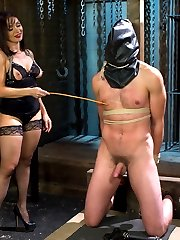 Mistress Lea Lexis has an ass for days that deserves worship! Slave Abel Archer endures heavy punishment in order to earn a chance for one sniff or lick of her perfect puckered hole. He's even locked away in our new bird cage and fucked mercilessly by the Fucksall deep in his ass and boy oh boy does his cock not lie!