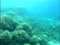Aqua Lovemaking 2 (Part 1 of 2)