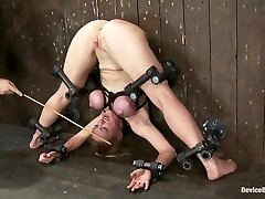 Darling Twisted, and Orgasmed to Oblivion