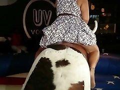 Plus-size upskirt on a bull