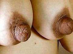 Huge Nips on Great Tits