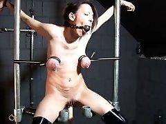 Tit restraint and screw machine