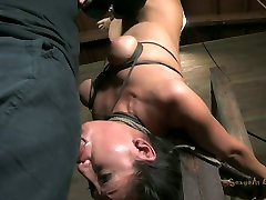 Asian slut Vicki Chase blowjobs while hanging upside down in krbbley kane sex video