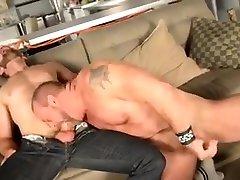 Hot Bears Sex