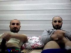 Twin bears 291118