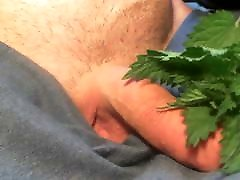 Nettles cock torture close up