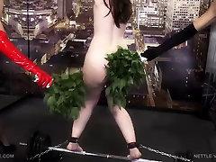 nettle virgin jade 1 - russian elder sex.barbra streisand boobs - queensect.com