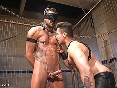 Dolf Dietrich likes surprises and he sure is in for a big one. Trenton Ducati rarely gets to...