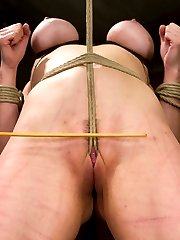 Welcome Annika back to HogTied and under the most intense conditions we can subject our bitches to - the live show. In scene one, Annika is given stressful predicament bondage with one leg attached to the pulley and a rope attached to her neck. If she struggles, she asphyxiates... pretty simple but also pretty brutal. Claire delights in tormenting her with corporal and humiliating her by tying a dick on a stick into her cunt and making her fuck it. Annika cums hard, live, and ready for more. In scene two, our former Russian trained ballerina is bound in a HogTied classic position - standing pole arch. A crotch rope is added and not one but two of our heaviest balls are hung from her tender cunt. We get to see her clit turn an incredible shade of purple. Claire adds to the intensity of the bondage by tying Annika's gag to the back wall, bending her into a tits up super hot arch. Then comes the single tail. No matter how much Annika struggles, she has to submit to the pain. Pleasure then comes to her sensitive clit in explosive orgasms through the crotch rope and then in her cunt. Finally, Annika is bound Live in an intricate ball suspension. Clover clamps are applied to her outer labia and attached to her toes. Claire goes after Annika's ass, squeezing orgasm after orgasm out of our pretty ballerina.