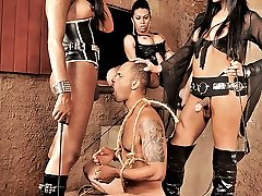 3 dirty shemale dommes punish a man