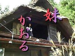 Japonés softcore 229