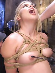 Cute blonde loves to be taught discipline and servitude while getting fucked hard by brutal slave trainers.