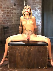 Kleio is fast becoming one of The Pope's favorites. She is a stunning girl who loves to be tied in brutal bondage and suffer for him. She quivers at the thought of his domination, and her pussy becomes moist when she submits to his sadistic desires. This slut is willing to do almost anything just to get the attention she needs from the only man in the world that she will submit to.