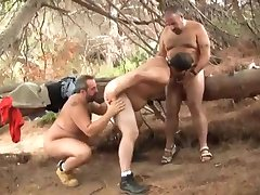 Trio de osos
