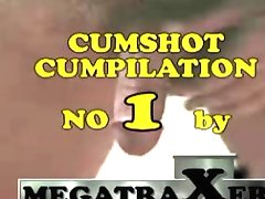 Megatraxer's cumshot cumpilation No. 1