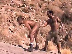 ARABIAN FISTING