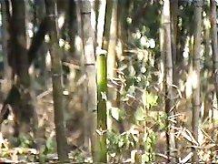 Masturbate by Bamboo