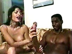 TitfuckTutustu top pornotähti sisältöä joillekin pornstar xxx toimia