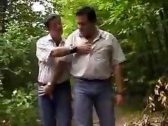 Lush bears in woods