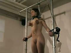 Obedient young curvy sex slave