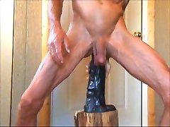 Hingst Dildo Extrem BDSM Anal