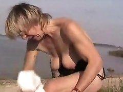 ドイツの成熟した搾乳シジュウカラビーチ