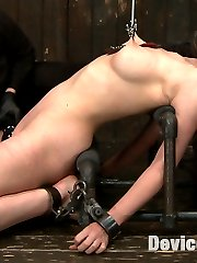 Nerine is clearly not new to kinky sex so here on Device Bondage we must give this pain-slut a proper challenge. Position 1 has her on her knees with neck restraints. Her ample breasts are highlighted with bondage and nipple suction. It takes a cock in her throat and a single-tail on her backside to make this bitch cum! In Position 2 she is suspended high up in metal and leather straps with her ass and pussy conveniently exposed with spread legs. She gets vicious clover clamps on her pussy lips but this does not prevent her from begging to cum with the dick-on-a-stick pounding her. Position 3 is a simple back arch with creative nipple clamps stretching her breasts taut. She has a great caning session to top it all off! A very intense scene with great chemistry between Dom and Sub.