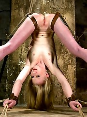 We could go into a huge long (very boring) description of every detail that happens in this shoot, or we can let the photos speak for themselves. Amazing bondage, suspensions, orgasms, and harsh corporal punishment are just some of the things Sarah eagerly endures for your viewing pleasure.