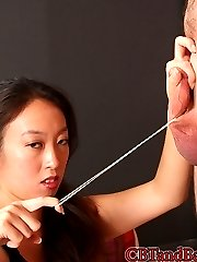 Empress Hikari has a new slave, and she is less than thrilled with his behavior. He infuriates...