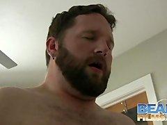 chubby bears