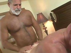 daddy bears hot scene