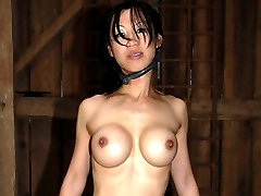 Our infamous live feeds are known for taking models and pushing them to their limit. Tia Ling...