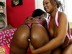 Black pussies get fucked with big dildos
