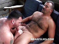 Horny daddy bears