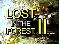Lost in the Forest Part II
