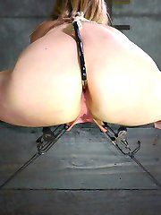 Winnie Rider has the kind of fantasies all girls have, but most are never ready to admit. This...