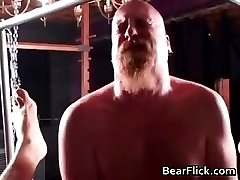 Hair gay bear in a hardcore BDSM fuck part2