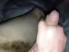My cock sucked