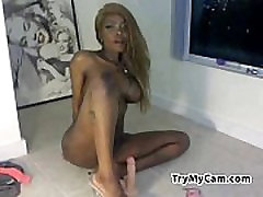 Busty ebony toying her ass at TryMyCam.com