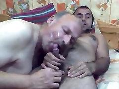 Bulgaran bear sucked