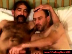 Two hairy gay bears cuddeling ends up with fellatio