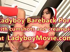 Ladyboy Dream Toying n Stroking